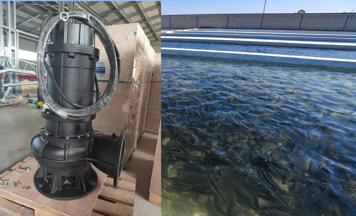 6 насосов по 1080 м3ч для рыбоводческого хозяйства, Сев.Осетия
