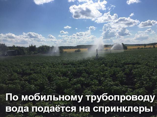 По мобильному трубопроводу вода подаётся на дождевальные пушки